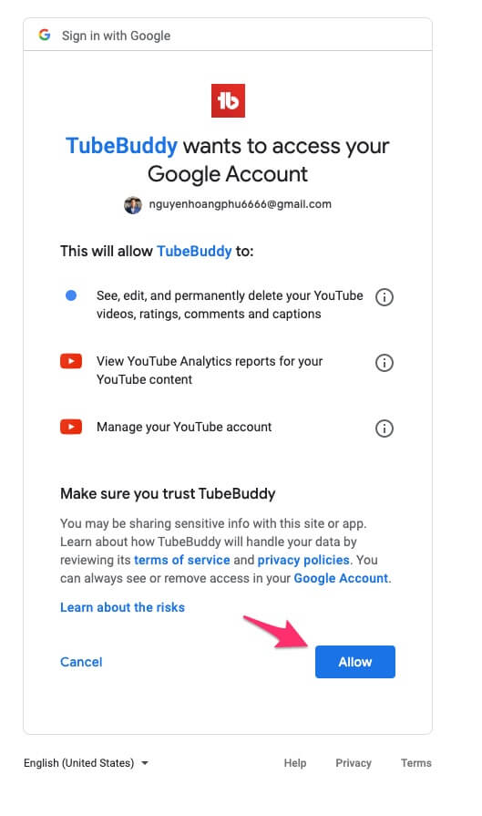 allow tubebuddy access google account