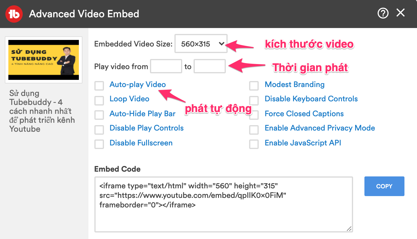 advanced video embed