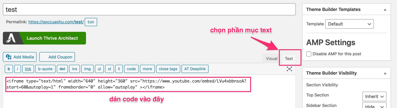 dan code vào website bằng text