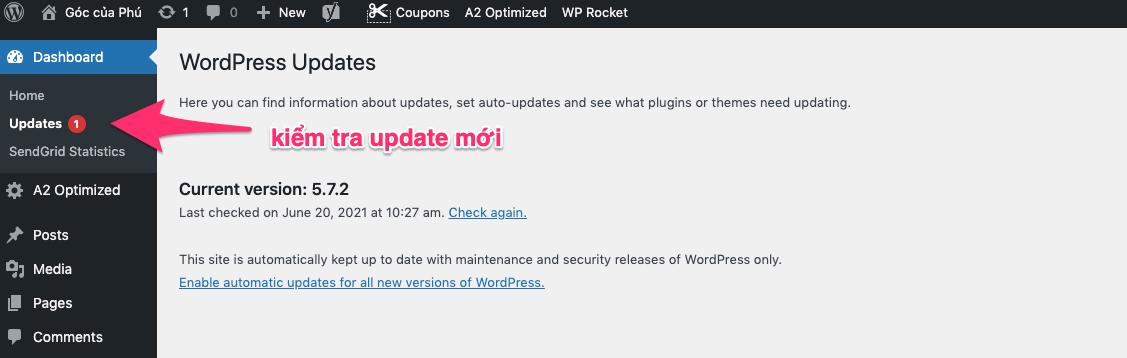 kiểm tra update mới trên wordpress